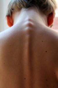 spinal-column-246273_640